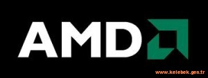 AMD satılacak mı?