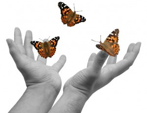 hands-releasing-butterflies-300x231