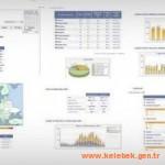 Bilişim dünyası web istatistikleri